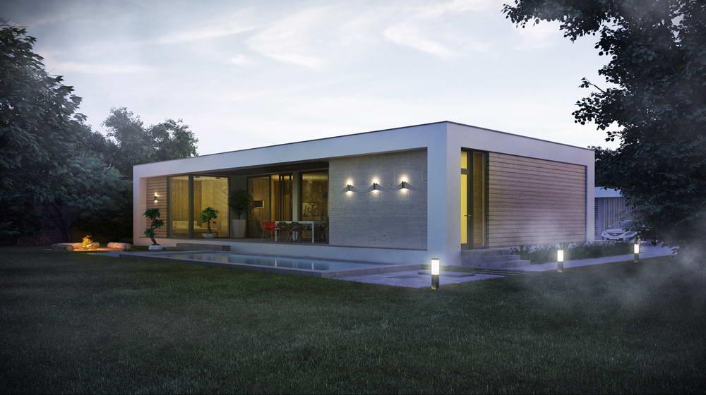 одноэтажные дома с односкатной крышей проекты фото
