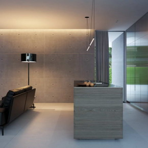 House with piano 21
